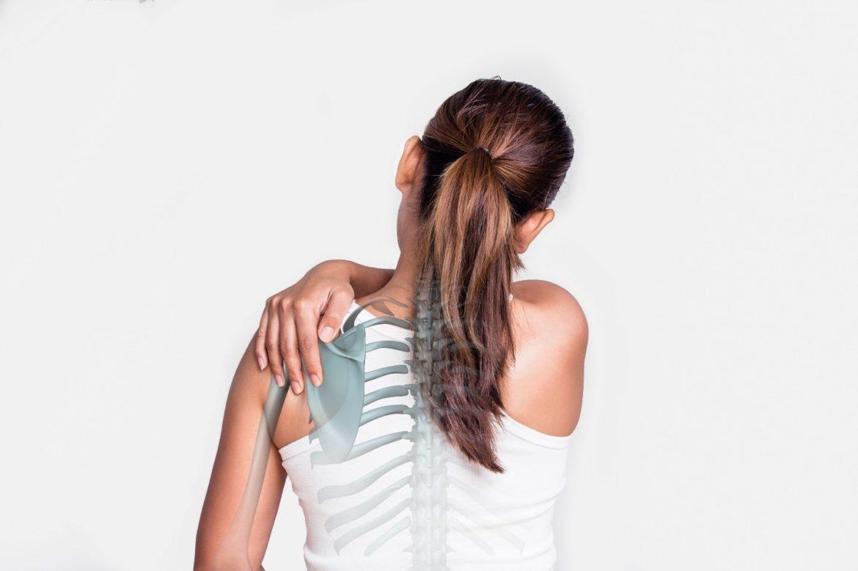 chiropractors-top-choice